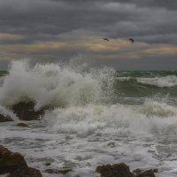 А море рвалось и кипело... :: Александр Пушкарёв