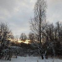Конец декабря :: Елена Павлова (Смолова)