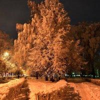Зима :: Алексей .