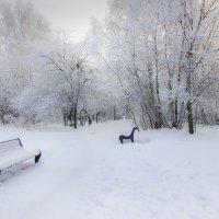 Морозный день декабря :: Наталья Лакомова