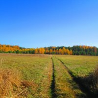 Осенний пейзаж :: Антон Завьялов