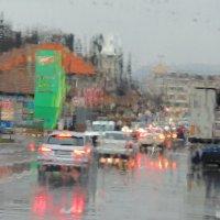 Дождь..дождь... :: Гала