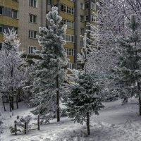 Зимний дворик :: gribushko грибушко Николай