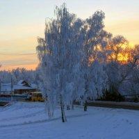 Ранний морозный закат... :: марк