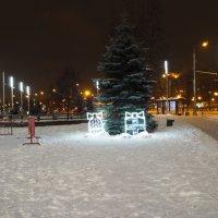 Новогодняя елка :: Роман Белых