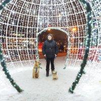 Новогодняя декорация. :: Роман Белых