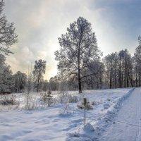 зима во всей красе :: юрий макаров