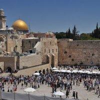 Иерусалим- Стена плача. :: igor G.