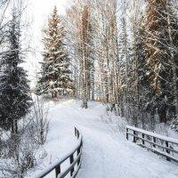 С Новым годом друзья! :: Эдуард Куклин
