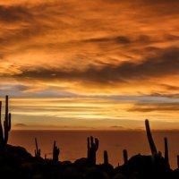 закат на острове кактусов :: Георгий А