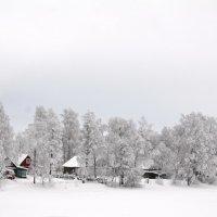 Под белым покрывалом  декабря :: Николай Танаев