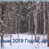 С Новым Годом! :: Татьяна Ломтева