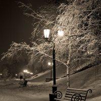 Ночь, фонарь, скамейка... :: Сергей