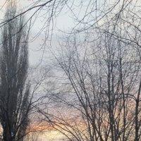 закат :: Елена Шаламова