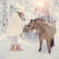 Зимнее волшебство :: Светлана Мизик