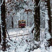 tram :: Vano Shumeiko