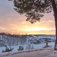 Закат с сосной. :: Михаил Полыгалов