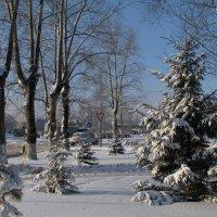 Зима в городе :: Grey Bishop