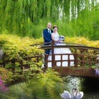 Свадебные краски :: Алексей Першин