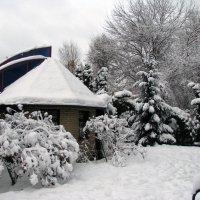 Зима в Гидропарке :: Виктор Марченко