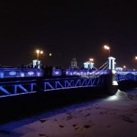 Дворцовый мост :: Сапсан