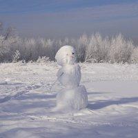 Привет от снеговика :: Наталия Григорьева