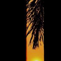 Закат в Тае. :: Любовь