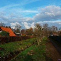 Оранжевая крыша :: Nina Yudicheva