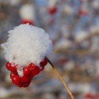 Снегурочка :: Нина северянка