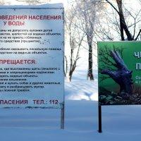 Берегите себя и природу! :: Дмитрий Арсеньев