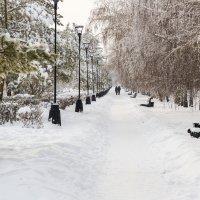 Уральские морозы :: Алена Турбина