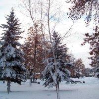 Первый снег в Новом Году... :))) :: Любовь К.
