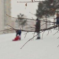 Новогодние каникулы! :: Татьяна Помогалова