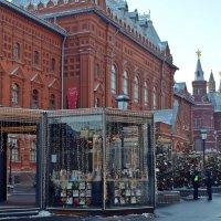 Возле Исторического музея. Москва :: Татьяна Ларионова