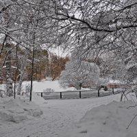 Зимнее озеро :: Valeri Verovets