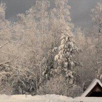 У леса на опушке, жила зима в избушке! :: Евгения Полякова