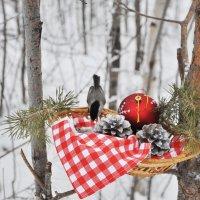 Январское угощение :: Людмила Ковалева