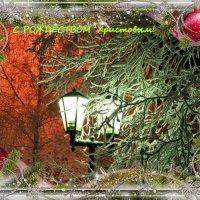 Поздравляю с Рождеством Христовым! :: Алла ZALLA