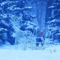 Страшный новогодний лес :: Юрий Гайворонский