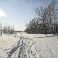 Под солнцем января.. :: Андрей Заломленков