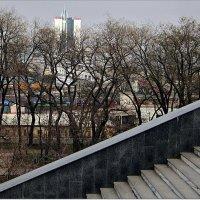 Вид на залив с греческой лестницы :: Людмила