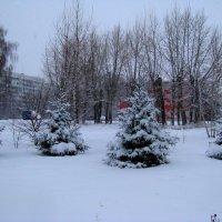 Зима. :: Владимир Драгунский