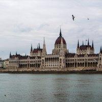 Здание Парламента ... Будапешт . :: Светлана Мельник
