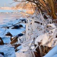 Зима :: Teresa Valaine