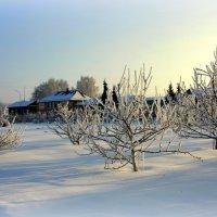 Зима в старом городе... :: Нэля Лысенко
