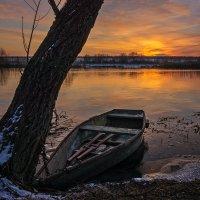 Лодка у дерева... :: Сергей