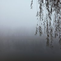 Туман :: Артем Абаноков