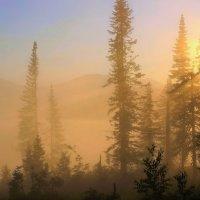Солнечно-туманный восход :: Сергей Чиняев