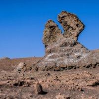 каменные гигантские щипцы :: Георгий А