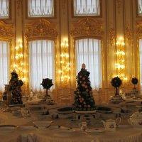 Большой Екатерининский  дворец :: Маера Урусова